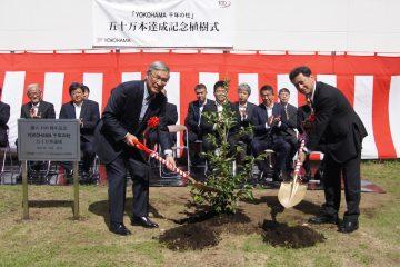 Quota 500.000 per gli alberi del progetto Forever Forest
