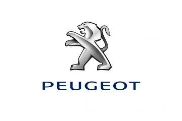 Meno di un anno: 100.000 Peugeot e PSA al 10,62%